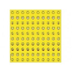 Maak je eigen smiley magneet (stickers)