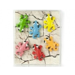 Mini magneetjes Gecko