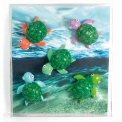 Mini magneetjes Schildpad