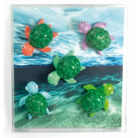 Mini fridge magnets TurtleAnimal Magnets
