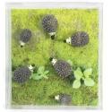 Mini fridge magnets Hedgehog