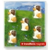 Mini fridge magnets Sint-bernard Barry