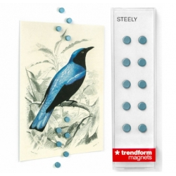 Super sterke mini magneetjes plat steely Zilver Blauw (set van 10)Super Sterke Magneetjes